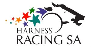Two new foals for the Port Pirie Harness Racing Club