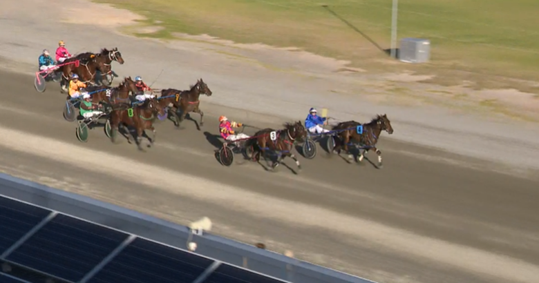 Fiord Wins For Stars